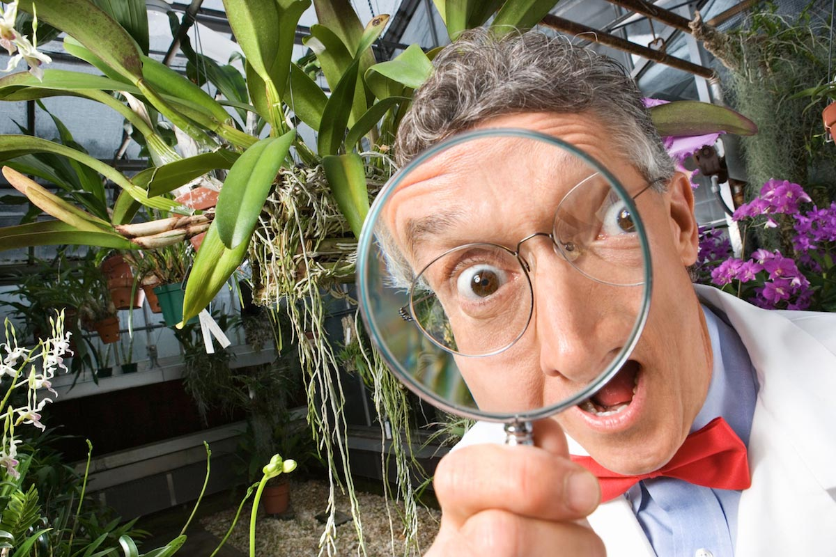Scientist-Gmo-Investigation-Funny-Magnifying-Glass
