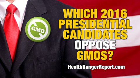 Which-2016-Presidential-Candidates-Oppose-GMOs-480