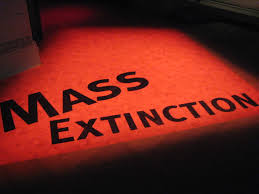Mass die-offs accelerate across the planet, by 2020 two-thirds of wild animals will be wiped out